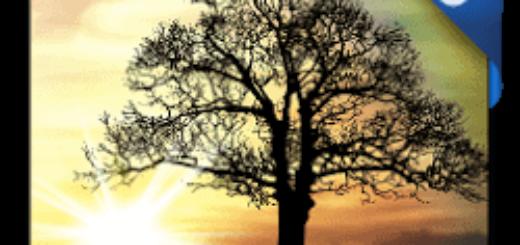 Sun Rise Pro Live Wallpaper v4.8.1 [Paid] [Latest]