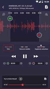 Grabadora de voz profesional Captura de pantalla